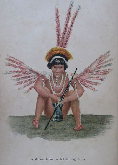 Image for Among the Indians of Guiana. Being sketches chiefly anthropologic from the  interior of British Guiana. With 53 illustrations and a map.