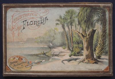 Image for Illustrated Florida.