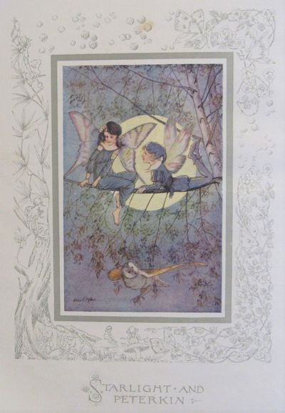 Image for The Story of Dulcibella and the Fairies